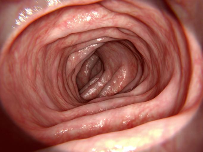 クリーンコロン(きれいな大腸?)とコールドポリペクトミー